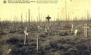 cementiri bosc Houthulst, Camps de Flandes, Flanders Fields, Història Flandes Bèlgica