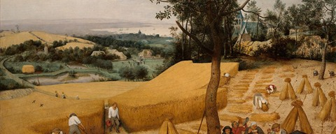 The Harvesters - Pieter Bruegel the Elder - © Public Domain