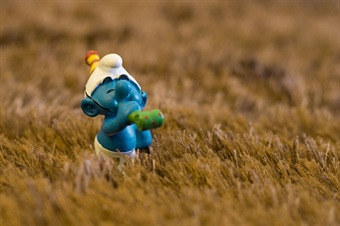 The Smurfs - ©Browserd (Pedro Rebelo)