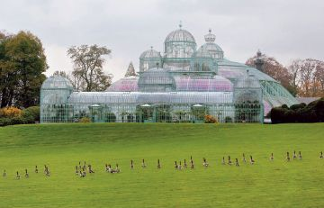 Brussels Royal Greenhouses - © Olivier Polet (copyright always obligatory)