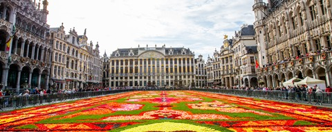 Grand-Place à Bruxelles - tapis de fleurs - © Antonio Ponte (https://creativecommons.org/licenses/by-nc-nd/2.0/)