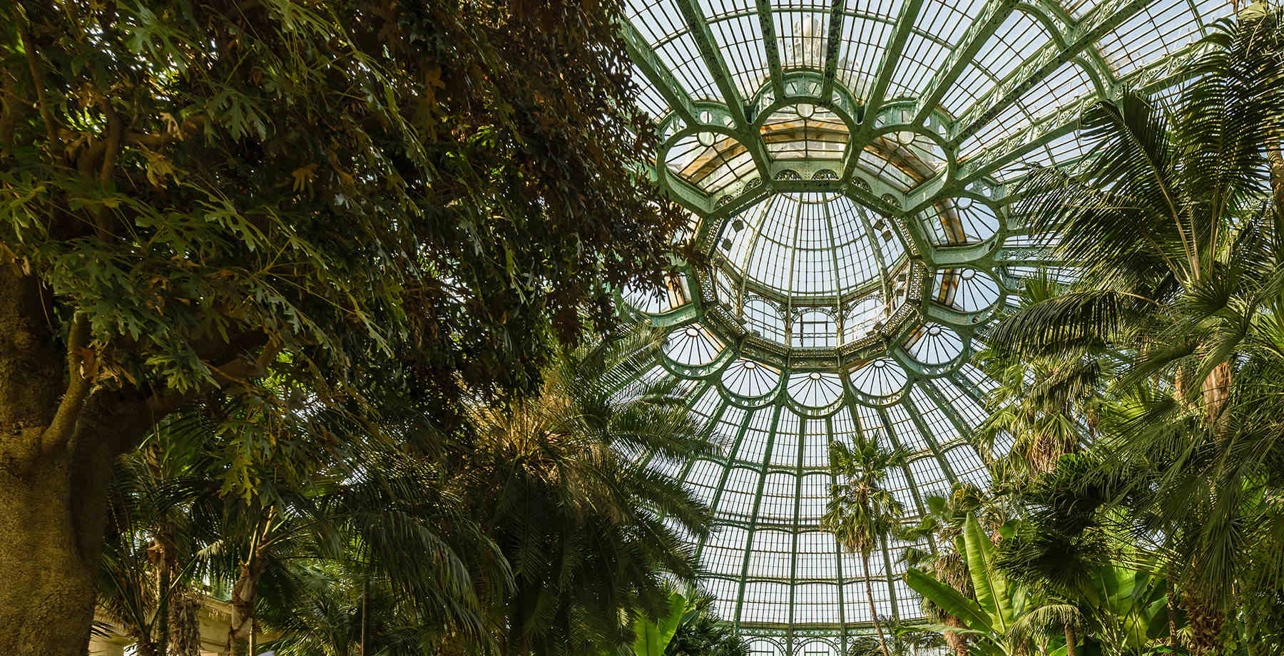 Royal Green Houses of Laeken - (c)Visit Brussels