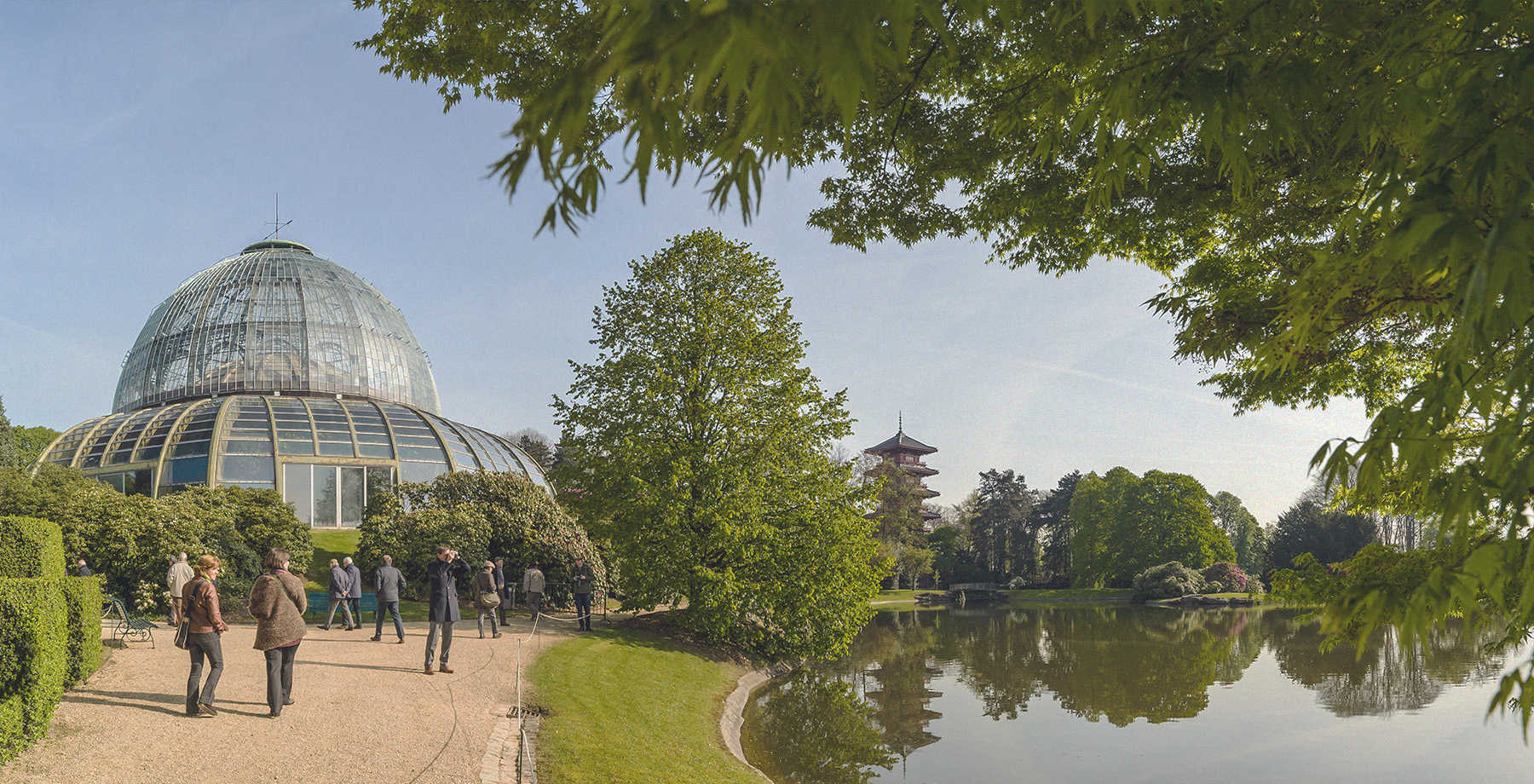 Royal Green houses - ©Olivier Polet